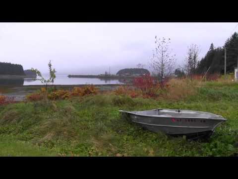 The Tlingit Way