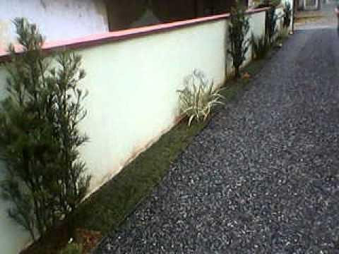 Jardim em muro youtube - Plantas trepadoras para muros ...