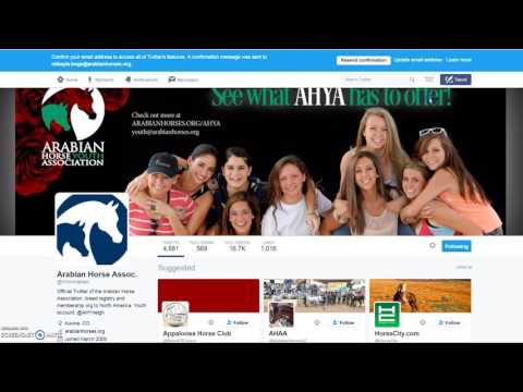 How To Use Social Media To Promote Your Arabian Horse Clubs and Events