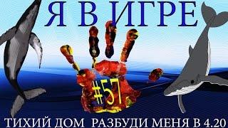 Синий Кит/Я В ИГРЕ/МОЯ история/BEN TV плюс