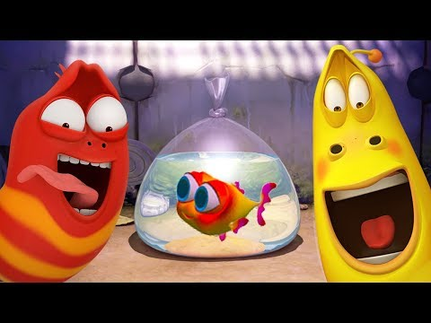 LARVA - BABY FISH SPECIAL | Cartoon Movie | Cartoons | Comics | Larva Cartoon | LARVA Official