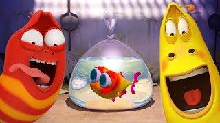 LARVA - BABY FISH SPECIAL   Cartoon Movie   Cartoons For Children   Larva Cartoon   LARVA Official