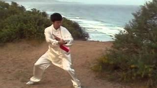 Taiji Jesse Tsao Tai Chi DVD Video clips