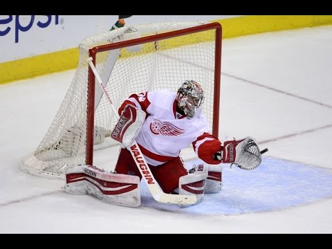 The Greatest Saves Ever Seen in SEASON 2014 - 2015 in NHL