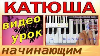 Катюша~Урок на синтезаторе-фортепиано~Katyusha~Dm (текст)