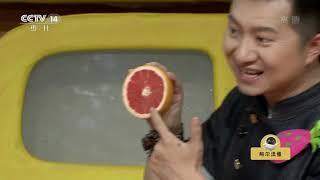 [智慧树]果果美食屋:果缤纷|CCTV少儿