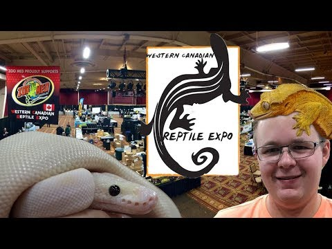 LARGEST REPTILE EXPO IN WESTERN CANADA! (WCRE 2017)