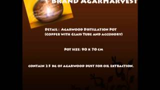 Agarwood Distillation Pot Healthy and Beauty Products - Agarwood Thumbnail