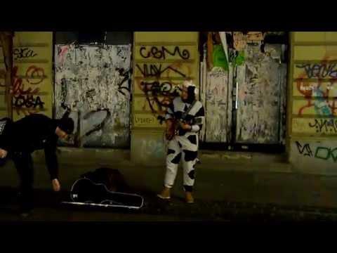 Uma vaca tocando guitarra. |  A cow playing guitar. | Krowa gra na gitarze.