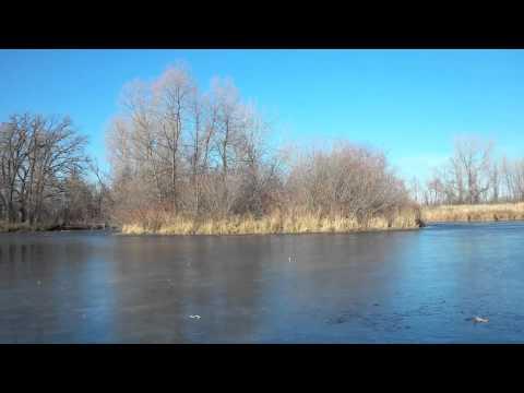 Water - Crosswinds Arts and Science School