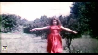YAARA DILDARA TERI HOGAYI (NOOR JEHAN) - REEMA & SHAAN - FILM CHANDI