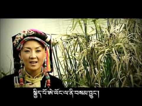(2009 best China Tibet Song
