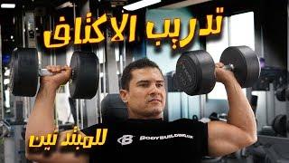 جدول تدريب الاكتاف كامل للمبتدئين تمارين الكتف فى الجيم تمرين اكتاف وتقوية العضلات رجال والنساء gym