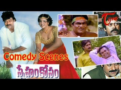 Sneham Kosam Movie Comedy Scenes || Back to Back || Chiranjeevi || Meena