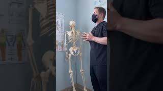 Differentiating Lower back pain, remapping Neuropathways, vestibular reintegration, imbalance