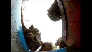 Go Pro Camera in a cow waterer
