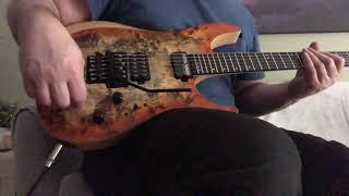 Schecter Reaper FR-S Electric guitar sustain
