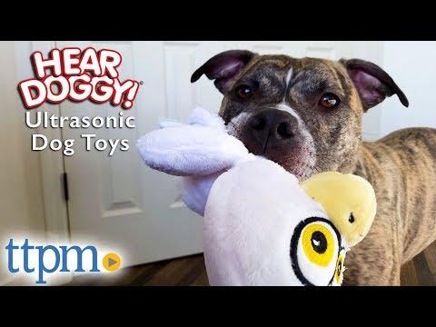 hear-doggy!-large-ultrasonic-dog-toys-from-worldwise
