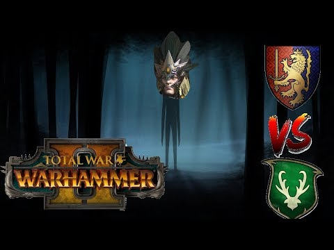 Bretonnia vs Wood Elves | QUEST INTO THE FOREST - Total War Warhammer 2