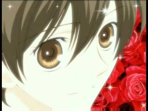 Ouran Host Club - Sorry Sorry