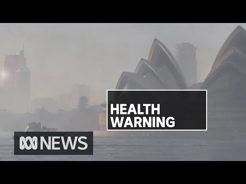 Sydney Smoke 'unlikely To Clear For Days' As Bushfires Burn Around NSW | ABC News