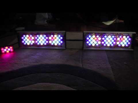 DIY LED Reef Light TEST!!!