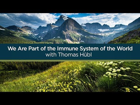We Are Part of the Immune System of the World - Thomas Hübl