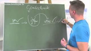 Kreidezeit 116: Gentechnik