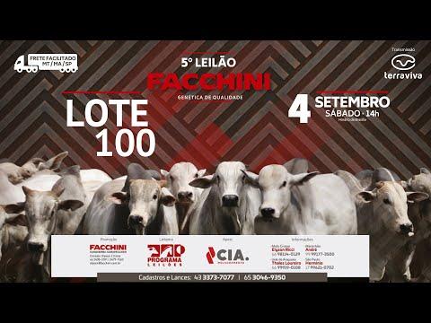 LOTE 100 - 5º LEILÃO FACCHINI 04/09/2021