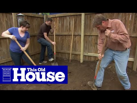 How to Landscape a Small Urban Yard | This Old House