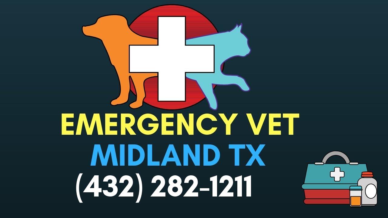 Emergency Vet Midland TX | 24 Hour Vet Clinic Midland TX | (432) 287-1211