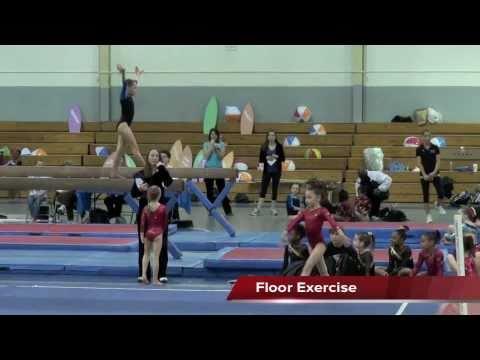 maryland level 3 gymnastics state meet 2016