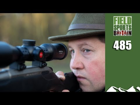 Fieldsports Britain - Roy's Muntjac Hunt