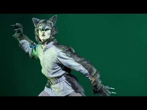 Watch The Royal Ballet's Peter and the Wolf on YouTube 27 March #OurHouseToYourHouse #StayAtHome