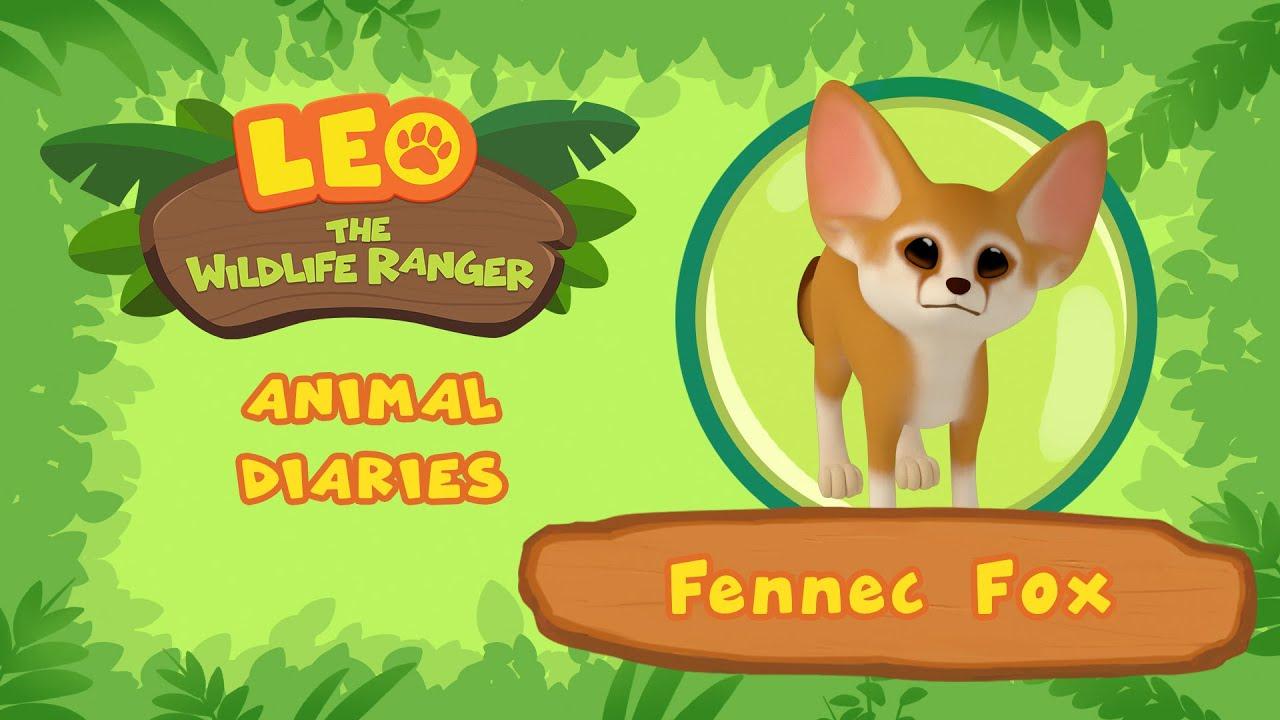 Fennec Fox    SMART and CUTE Little Fox!   Leo the Wildlife Ranger   Fun Animal Facts