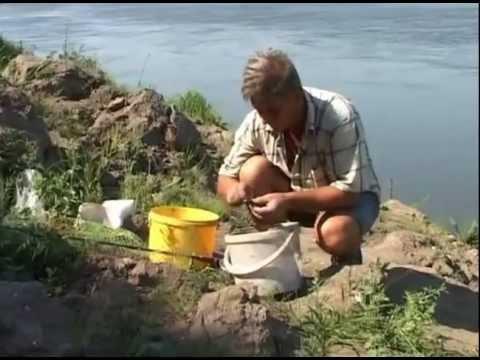 пшено для рыбалки видео