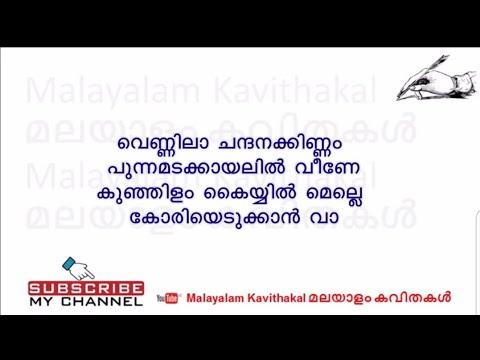 Pinnil Vannu Kannu Potham With Lyrics | Vennila Chandana Kinnam New Version