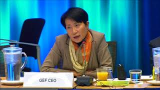 53rd GEF Council Day 2 Nov 28, 2017