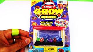 Magic Grow Fish Aquarium