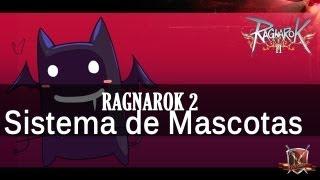 Ragnarok 2: Sistema de Pets y como subirlas de nivel
