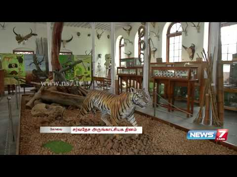 Renovated Gass Forest Museum draws crowd | Tamil  Nadu | News7 Tamil |