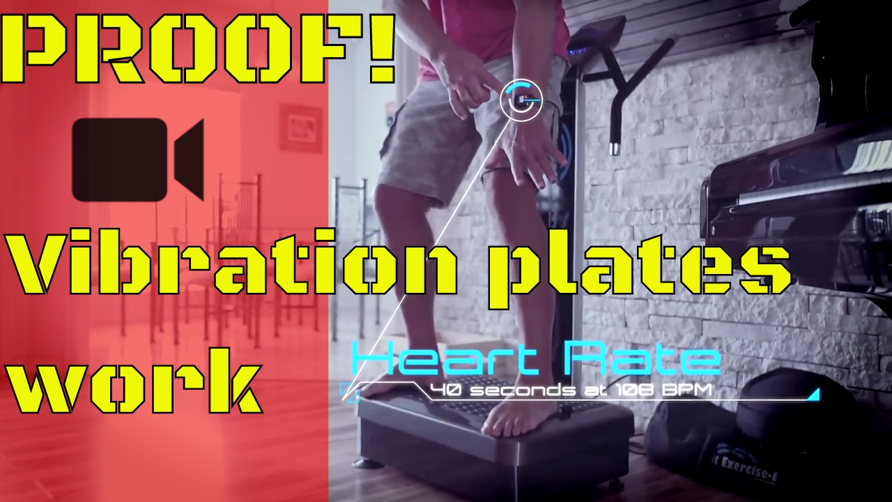 Do Whole Body Vibration Machine Really WORK! | PROOF | Vibration Plate  Weight Loss