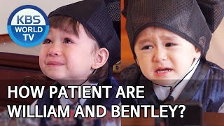 How patient are William and Bentley? [The Return of Superman/2020.03.29]