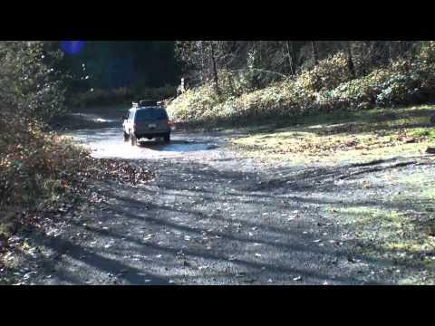 Hale Creek Trip