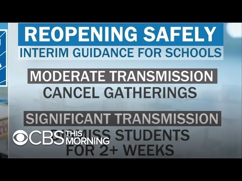 Dr. Agus on whether schools will be able to safely reopen in the fall