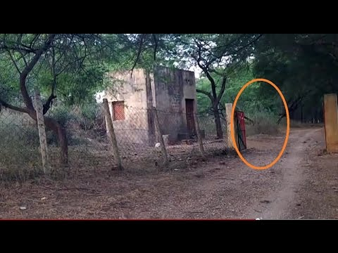 Ghost figure appeared and moves toward cabin. GHOST at forest check post
