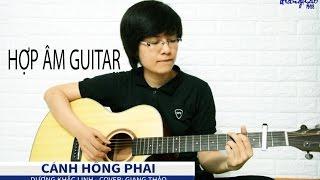 Hợp âm - Cánh Hồng Phai - Cover Giang Thảo
