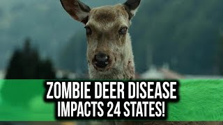 Scientists warn about the Zombie Deer Disease!