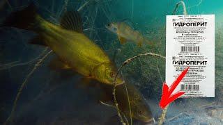Реакция рыбы на ГИДРОПЕРИТ Подводная съемка