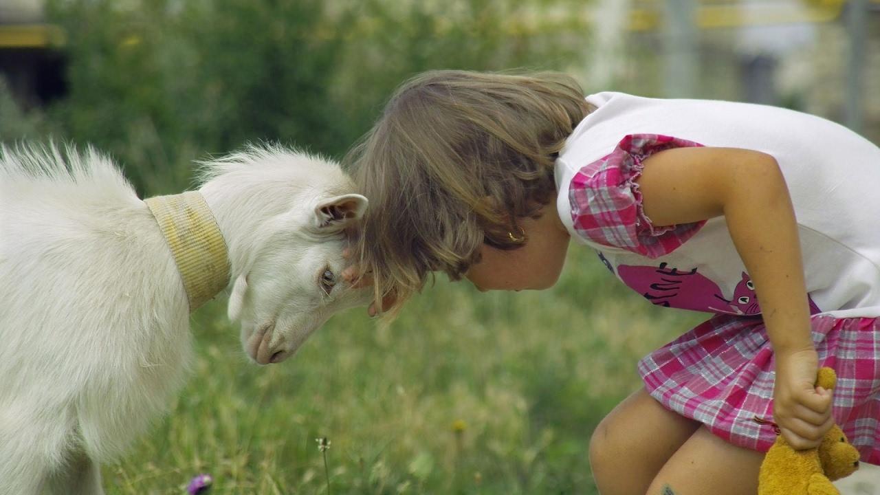 Смешные фотографии детей с животными